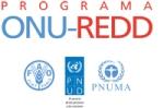 UN-REDD_full_logo_SP-pb9
